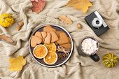 seasonal food and drinks season concept - gingerbread cookies with dried orange slices and cinnamon, poster