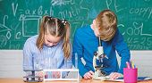 Kids Study Chemistry. School Chemistry Lesson. School Laboratory. School Education. Girl And Boy Com poster