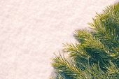 Christmas Flatlay Composition with Green Pine Tree Brunches on White Snow Texture Background, Creati poster