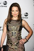 LOS ANGELES - JAN 10:  Kimberly Williams-Paisley attends the ABC TCA Winter 2013 Party at Langham Hu