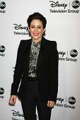 LOS ANGELES - JAN 10:  Patricia Heaton attends the ABC TCA Winter 2013 Party at Langham Huntington H
