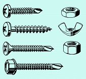 Screws and nuts