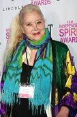 LOS ANGELES - JAN 12:  Sally Kirkland arrives at the 2013 Film Inependent nominees brunch at BOA Ste