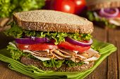stock photo of carbohydrate  - Homemade Turkey Sandwich with Lettuce Tomato and Onion - JPG