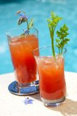 pic of borage  - Bloody Mary alcohol cocktails garnished with borage flowers and celery on swimming pool side outside of hotel in hot day suited for vacation or travel theme - JPG