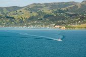 Cruise Ship Tender Leaving Akaroa Harbour Nz