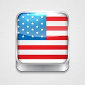 vector 3d style flag icon of united state of america