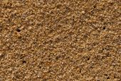 Yellow sand of southern coast. Texture. Background.