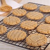 Peanut Butter Cookies Cooling