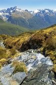 stock photo of tramp  - Routeburn track - JPG