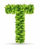 Letter T,  vector alphabet of green leaves