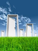 High resolution green, fresh and natural 3d conceptual grass over a blue sky background, opened door