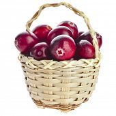Cranberries in wicker basket isolated on white background