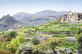 image of jabal  - Image of landscape Saiq Plateau and terrace cultivation in Oman - JPG