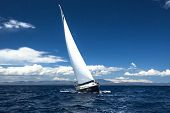 Yachting. Sailing in the wind through the waves. Luxury yachts.