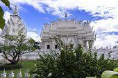 Hibiscus Bush And Wat Rong Khun