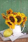 Beautiful sunflowers in pitcher with pears on table on wooden background