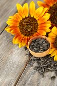 Sunflowers and seeds in bowl on wooden background