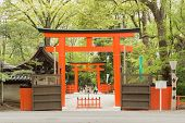 KYOTO, JAPAN - APRIL 20th : The entrance of Tadasu No Mori(Shimogamo Shrine)  in Kyoto, Japan on 20t