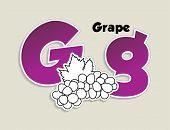 Fruits and vegetables alphabet - letter G - vector eps 10 illustration