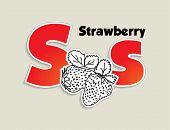 Fruits and vegetables alphabet - letter S - vector eps 10 illustration