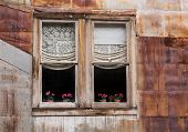 Windows In Ghost Town Of St Elmo