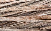 Background Close Up Of Cedar Trunk Bark