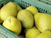 stock photo of pomelo  - The closeup of pomelo fruit  in the market - JPG