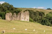 Thirlwall Castle With Sheep