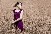 Beauty In Cornfield With Purple Dress