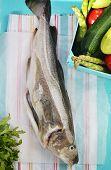 Raw Codfish.