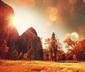 Autumn season in Yosemite