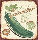 picture of cucumber  - Cucumbers  - JPG