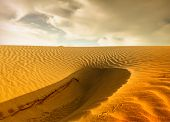 picture of sahara desert  - Sunset over the Sahara Desert - JPG