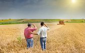 image of harvest  - Peasant and business man talking on wheat field during harvesting - JPG