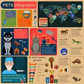 Domestic pets infographic elements, helthcare, vet.