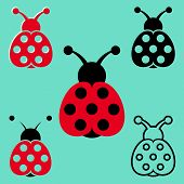 Seven Spot Ladybird Icons