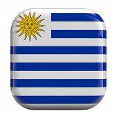 Uruguay Flag Icon Image