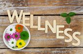 Wellness written with wooden letters and santini flowers on rustic surface