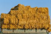 stock photo of trailer park  - Fresh straw hay bales on a trailer in a field - JPG
