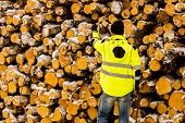 Lumberjack standing on front of pile of timber