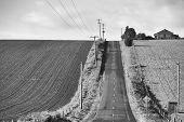 Rural Farmland Black and White
