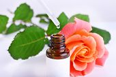 Dropper bottle of perfume with rose on light background