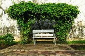 image of sweetheart  - romantic chair tree sweetheart in the park - JPG