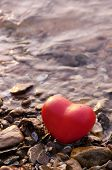 Red Shape Heart  On Rock And Shell Beach