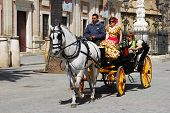 Horse drawn carriage, Seville.