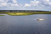 foto of boom-truck  - A sunken truck sits in a shallow marsh with the Grand Isle Bridge in the background - JPG