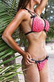 image of woman bikini  - Beautiful woman - JPG