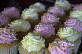 pic of sprinkling  - This is a photograph of Vanilla cupcakes topped with Pink and Yellow buttercream - JPG