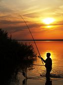 image of catch fish  - Fisherman catches fish by spinning on the lake at sunset - JPG
